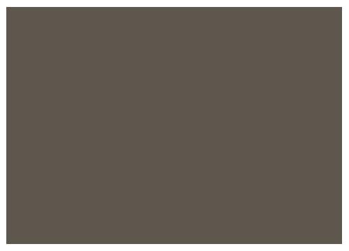 STUDIO TAISHIN